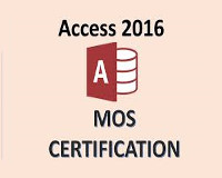 /Upload/100/lec/license_mos_access2016_01711.jpg
